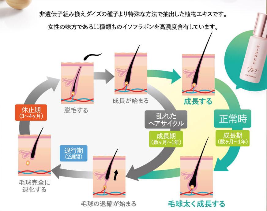 女性用発毛促進剤ミホレの解約手順